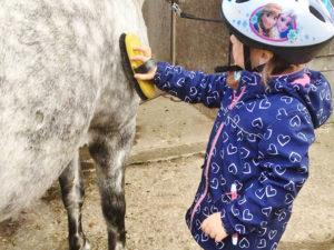 Kind beim striegeln eines Ponys