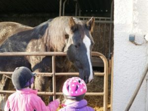 Zwei Kinder besuchen die Pferde