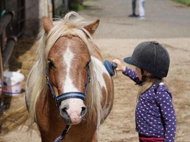 Kind bem striegeln eines Ponys