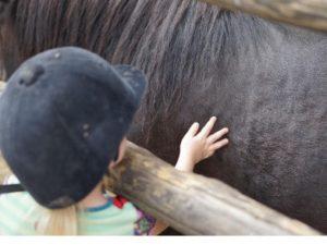 Kind beim streicheln eines Ponys