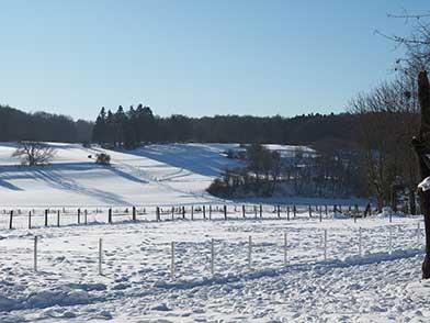 Umgebung bzw. Ausblick in die Schneelandschaft