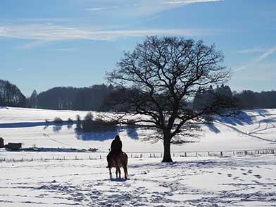 Ausritt im Winter mit einem Pferd vom Ferienbauernhof