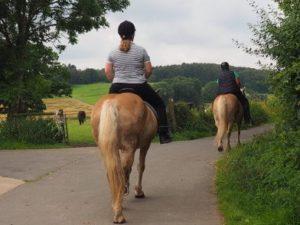 Ausritt der Berittführerin mit den Pferden